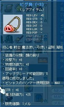 Maple110930_185708.jpg