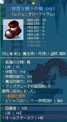 Maple111130_194749.jpg