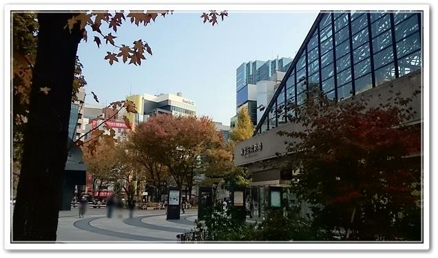 東京芸劇周辺 秋の芸劇