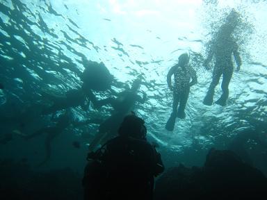 水面はスノーケル軍団でいっぱいです(笑)
