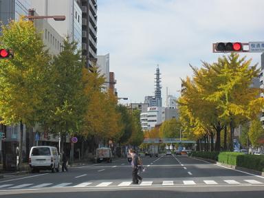 名古屋は中心部でも緑が多いです♪