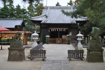 2011上高野神社「菊花展」001