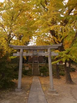 杉戸八幡神社