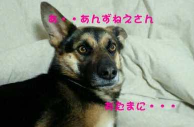 image0007.jpg