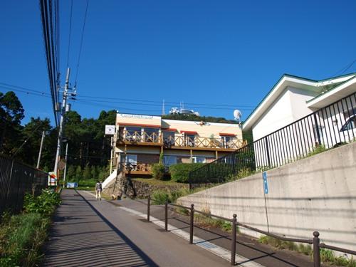 P9099732-1.jpg