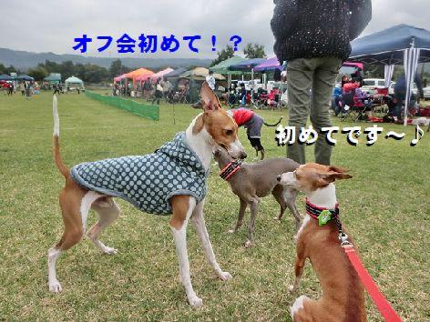 b_20141013085756b22.jpg