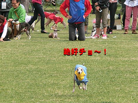 h_2014101401512357a.jpg