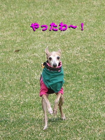 i_20141014015122d12.jpg