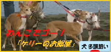 itabana3_201410282134171fa.png