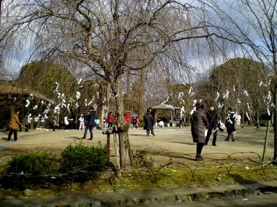 八坂神社 (47)
