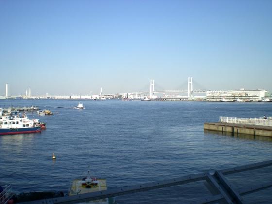 横浜港 (178)