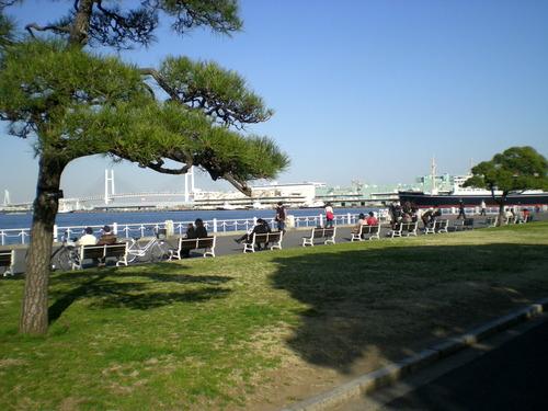 横浜港 (186)