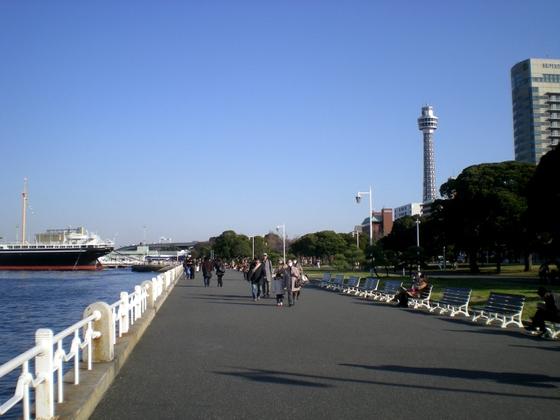 横浜港 (193)