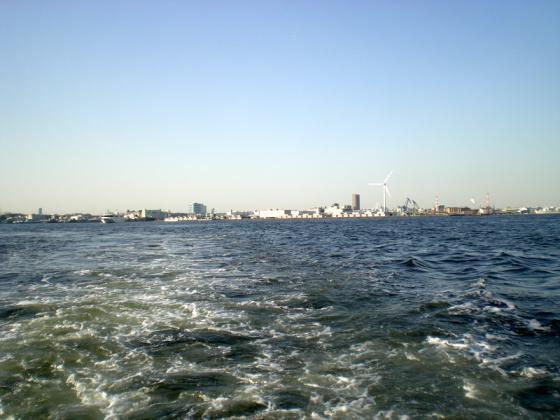 横浜港 (231)