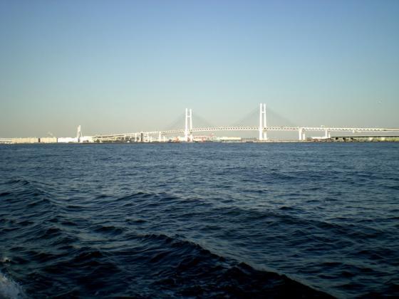 横浜港 (235)
