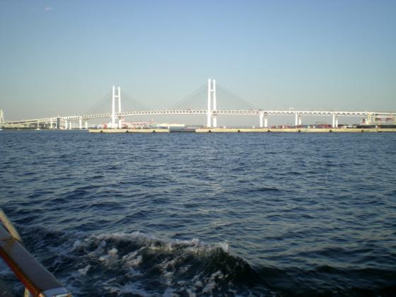 横浜港 (251)