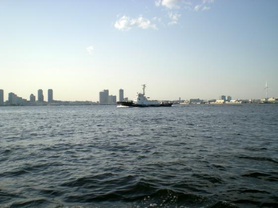 横浜港 (252)