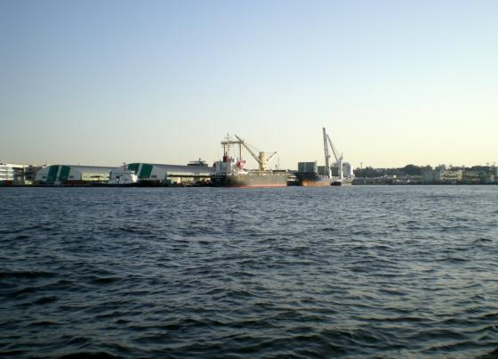 横浜港 (258)