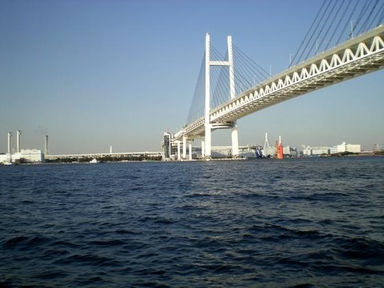 横浜港 (261)