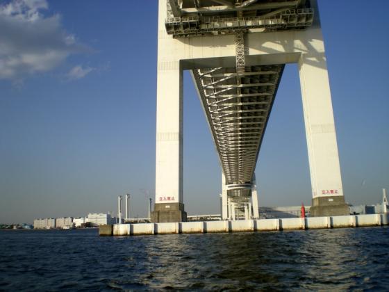 横浜港 (267)