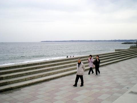 三浦海岸、マホロバ・マインズ三浦 (1)