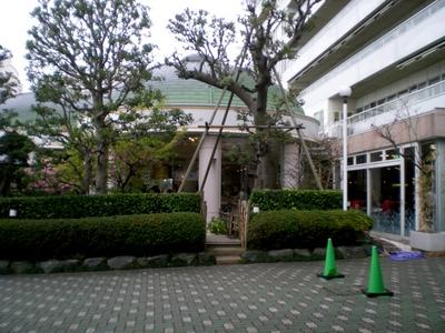 三浦海岸、マホロバ・マインズ三浦 (56)