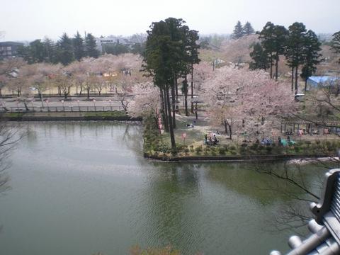 高田城跡    (40)