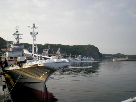 勝浦港 (27)
