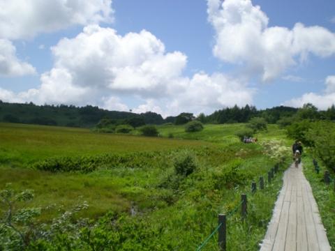 霧ヶ峰・八島湿原 (106)