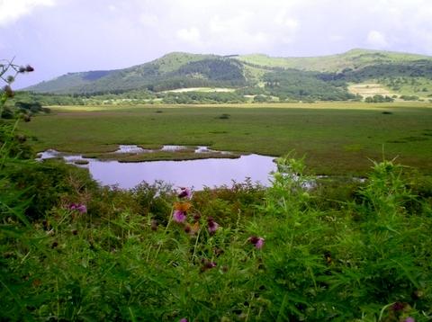 霧ヶ峰・八島湿原 (146)