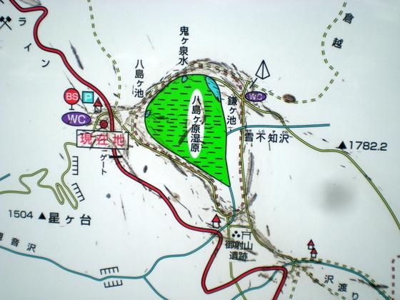 霧ヶ峰・八島湿原 (164)