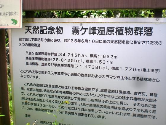 霧ヶ峰・八島湿原 (165)