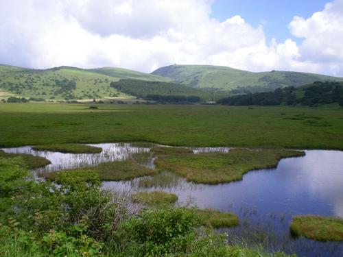 霧ヶ峰・八島湿原 (138)