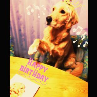 lia_birthday_s.jpg