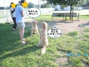 柚冬ちゃんとりあ(2011.07.16)