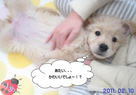 りあ(2011.07.25)