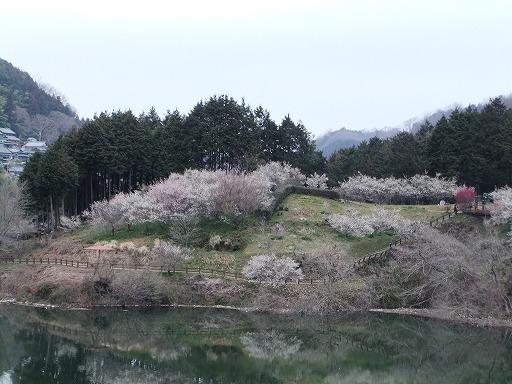 20110320 055