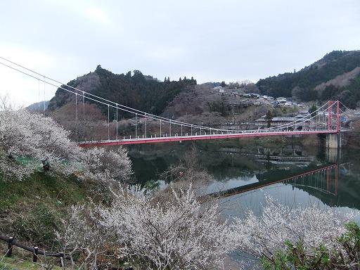20110320 056
