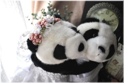 panda2 001