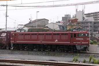 rie2453.jpg