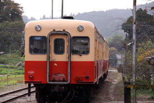 rie2816.jpg