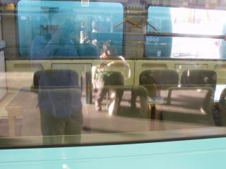 DSCF0188_20100930131637.jpg