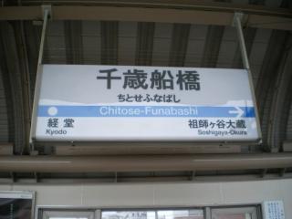 IMGP4455.jpg