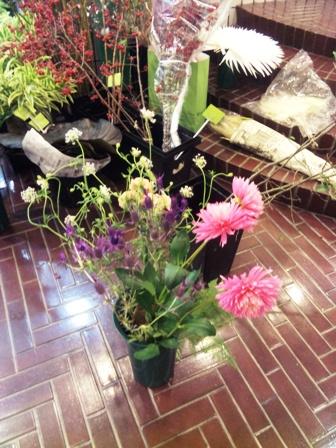 フリーチョイス 選んだ花