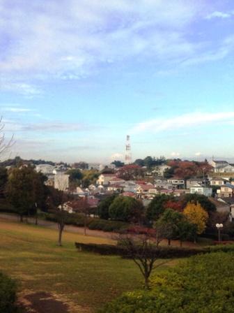 朝ラン_根岸森林公園からの景色(富士山)I