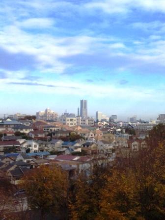 朝ラン_根岸森林公園からの景色(ランドマークタワー)