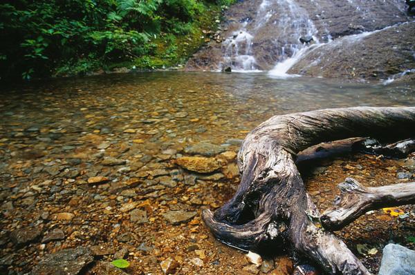 2010.8.23みろくの滝6b4