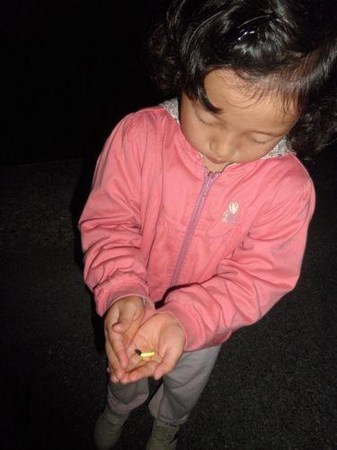 2011.6.2 hotaru1