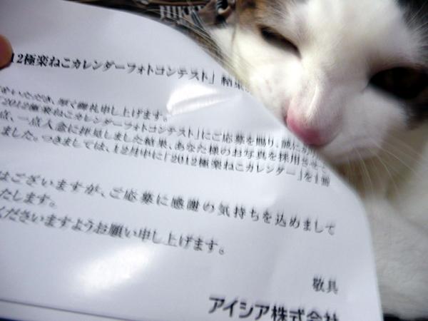 110920_rikimaru2.jpg