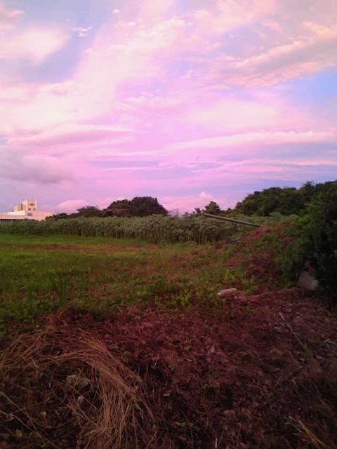2010_08_riko01.jpg